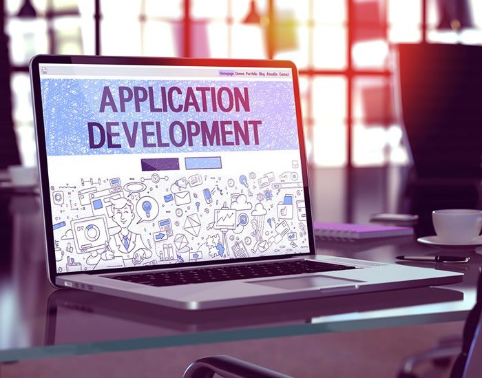 Custom Web Application Development Services in Dubai