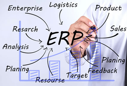 Custom ERP Development