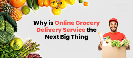 Why is Online Grocery Delivery Service the Next Big Thing